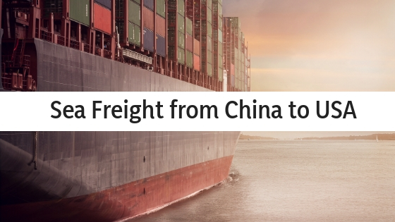 Your key to success is choosing sea freight
