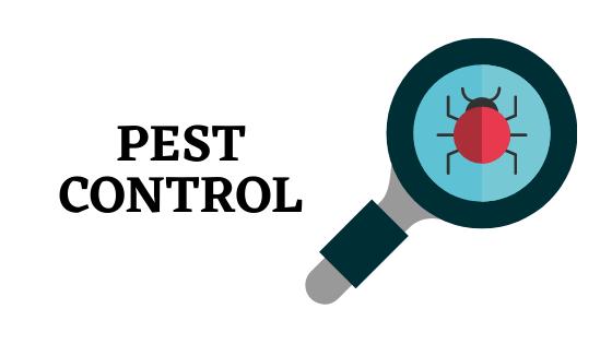 A General Guide To Pesticide Control Service